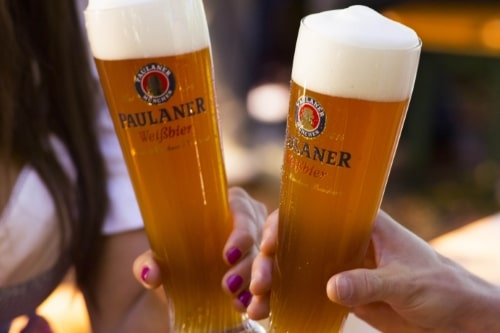 Restaurant Pilis excursion, walk, hike - Paulaner draught beer